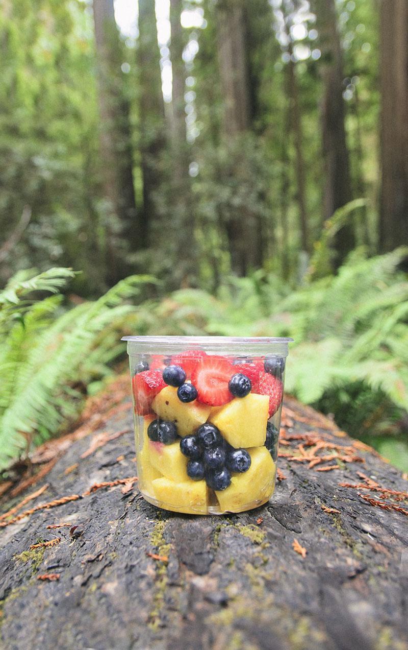 roadtrip_amerika_potovanja_redwoods_10