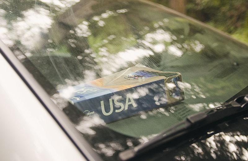 roadtrip_amerika_potovanja_redwoods_6
